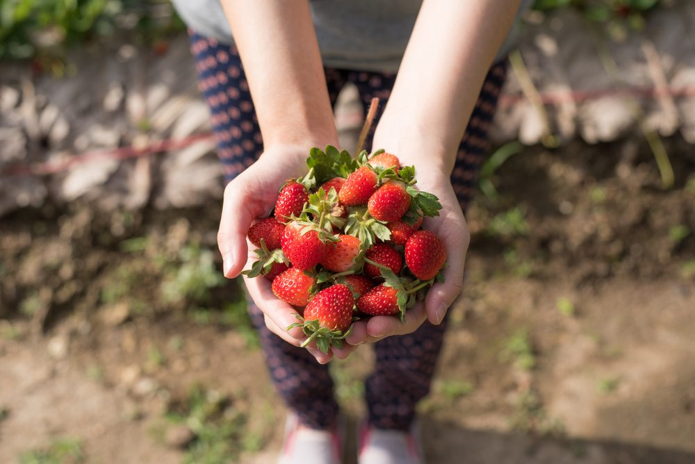 spring clean your eating