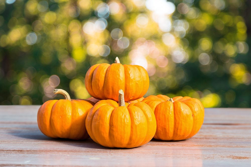 October Produce_01_Pumpkins