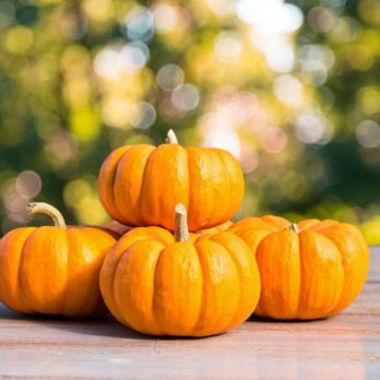 5 Ways Eating Pumpkins Can Improve Your Health