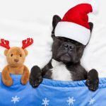 Do These 6 Things In December, And You'll Feel Rested All Month Long