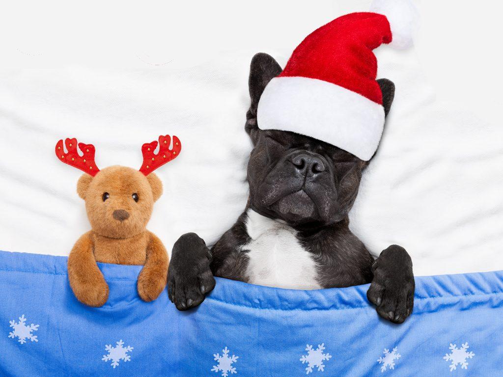 more sleep over the holidays