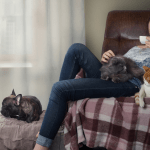 can cats and dogs catch colds, woman with cats and a dog