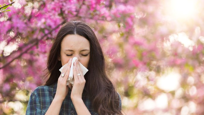 allergies in canada