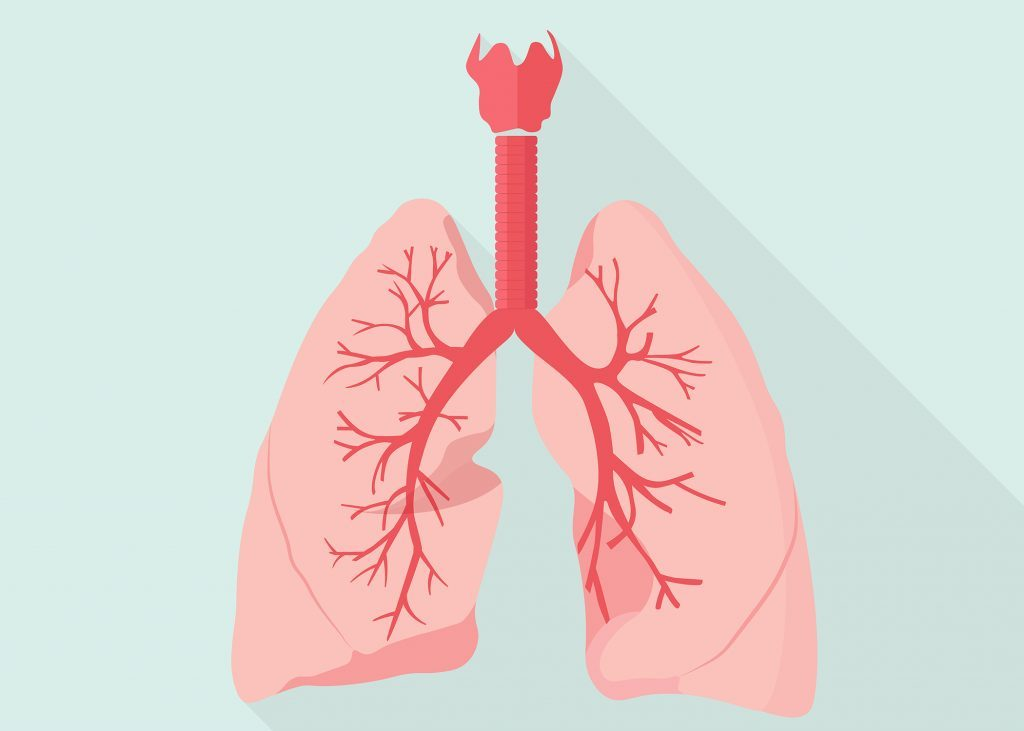 How to cure bronchitis naturally remedies that work photo credit shutterstock ccuart Choice Image