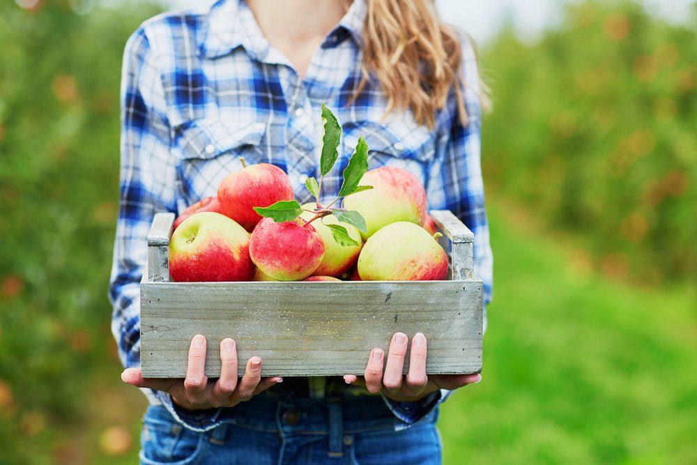Surprising Health Benefits Of Apples Best Health Canada