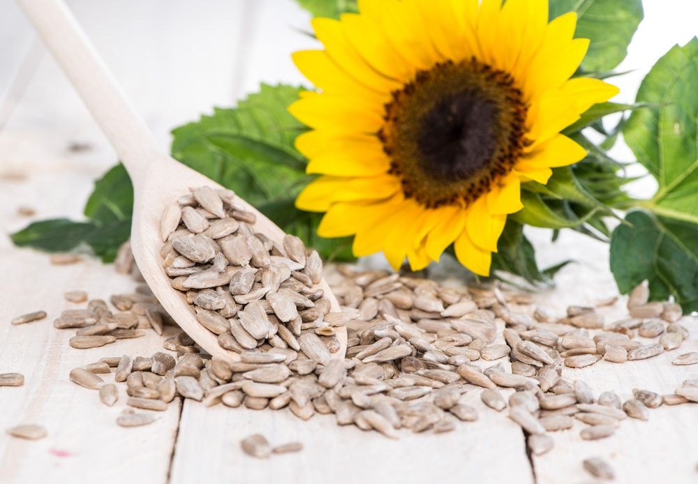 healthy seeds_ sunflower seeds