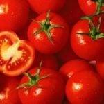10 tasty tomato recipes