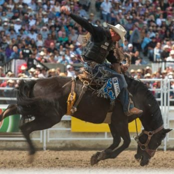 10 Things You May Not Know About the Calgary Stampede