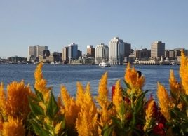 Canada's bluest communities: Halifax