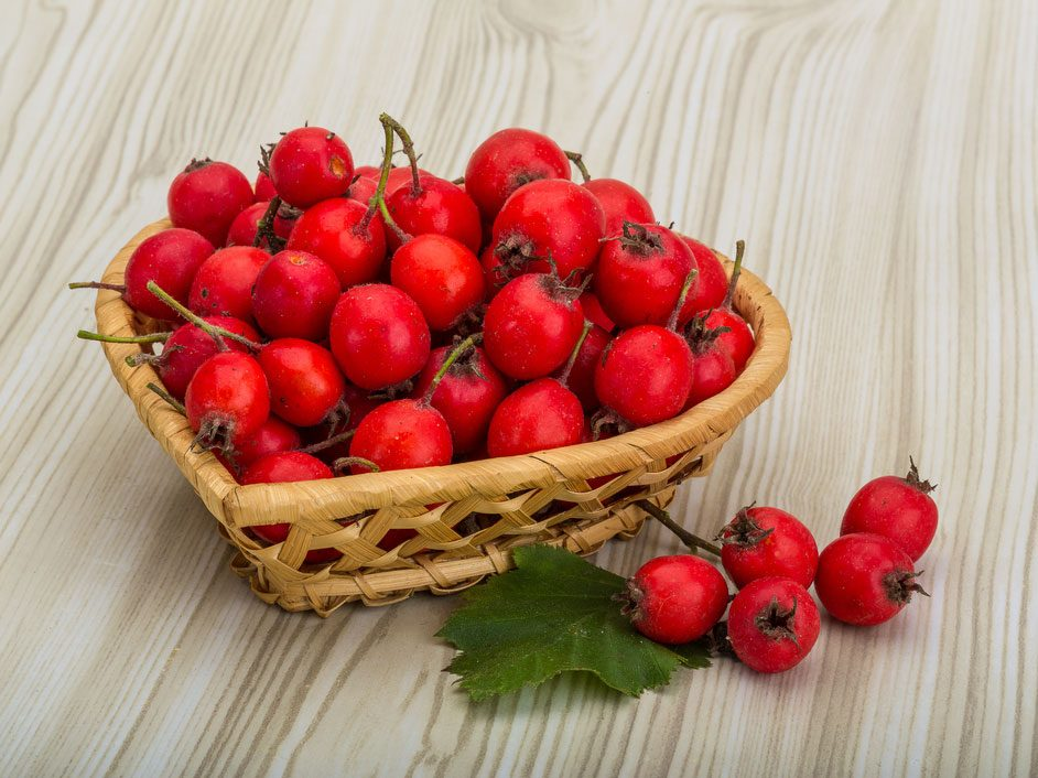 Hawthorn: A Natural Way to Boost Heart Health