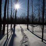 Natural home remedies: Seasonal affective disorder (SAD)
