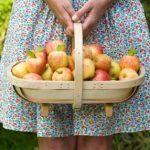 News: An apple a day keeps heart attacks away