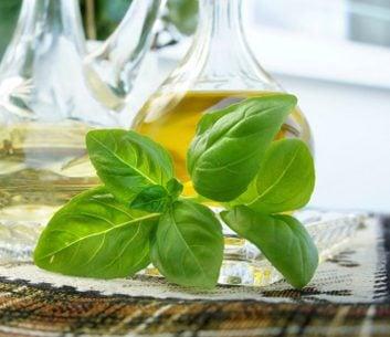 oilve oil basil