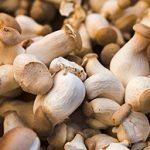 Sautéed King Mushrooms
