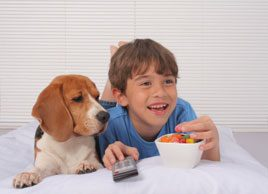 10 things you should never feed your pet