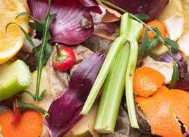 kitchen food waste compost