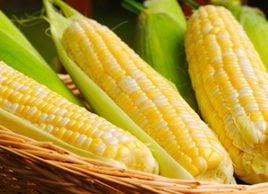 Corn and Swiss Chard Sauté