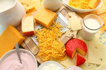 dairy foods