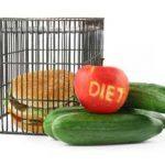 diet_1