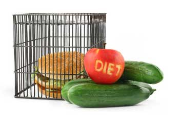 diet ban junk food