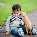 News: Kids in families with dogs are healthier