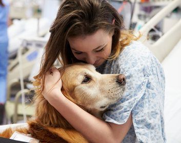 Could your pooch be a therapy dog?