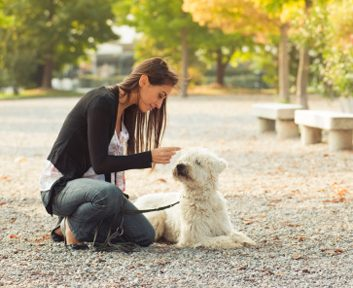 News: Having a dog may protect you from heart disease
