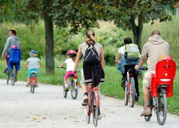 family fitness bikes