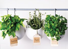 11 ways to use fresh herbs