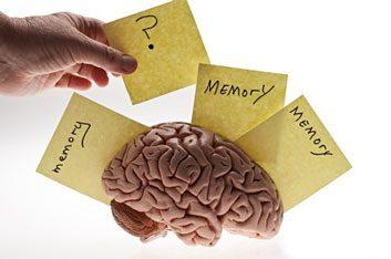 memory loss and brain