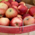 iStock_apples_18