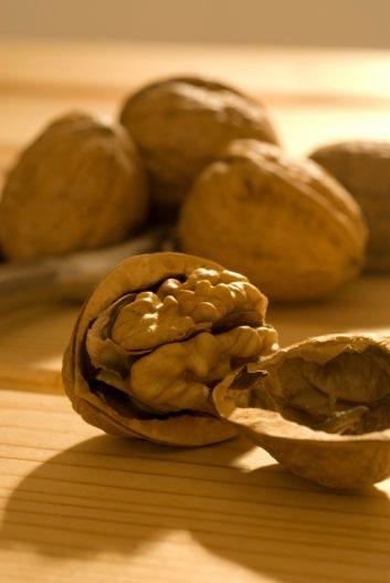 istock_walnuts-66234176.jpg