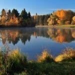 istock_wetlands_18
