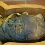 News: Did this Egyptian mummy die of a heart attack?