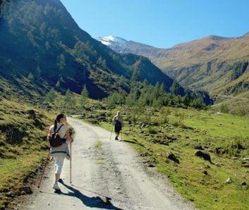 nordic walking scenery