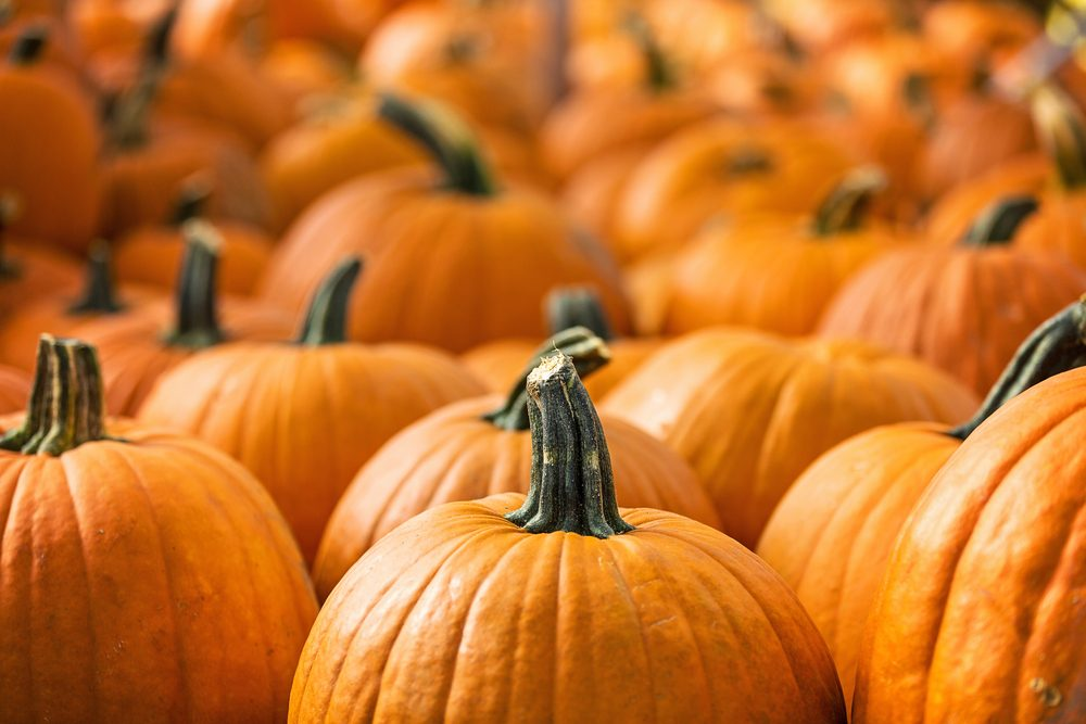 The beta-carotene in pumpkins helps lower cancer-related diseases.