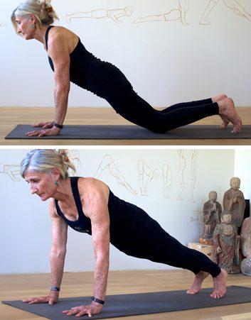5. Plank