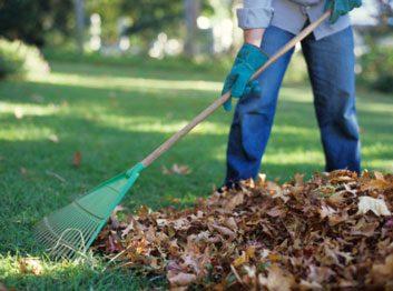 fall raking leaves