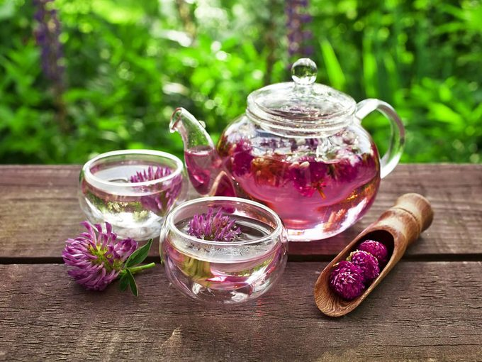 Red Clover: Use it to Relieve Menopausal Discomfort