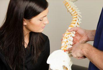 spine shape