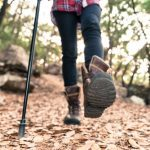 The fitness benefits of Nordic walking
