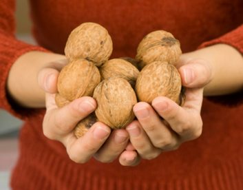 News: Want to live longer? Eat more nuts.