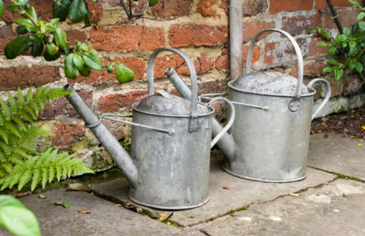 watering cans gardening