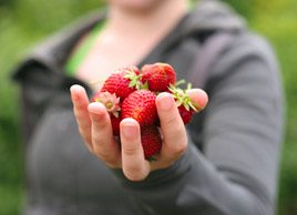 womanholdingstrawberries