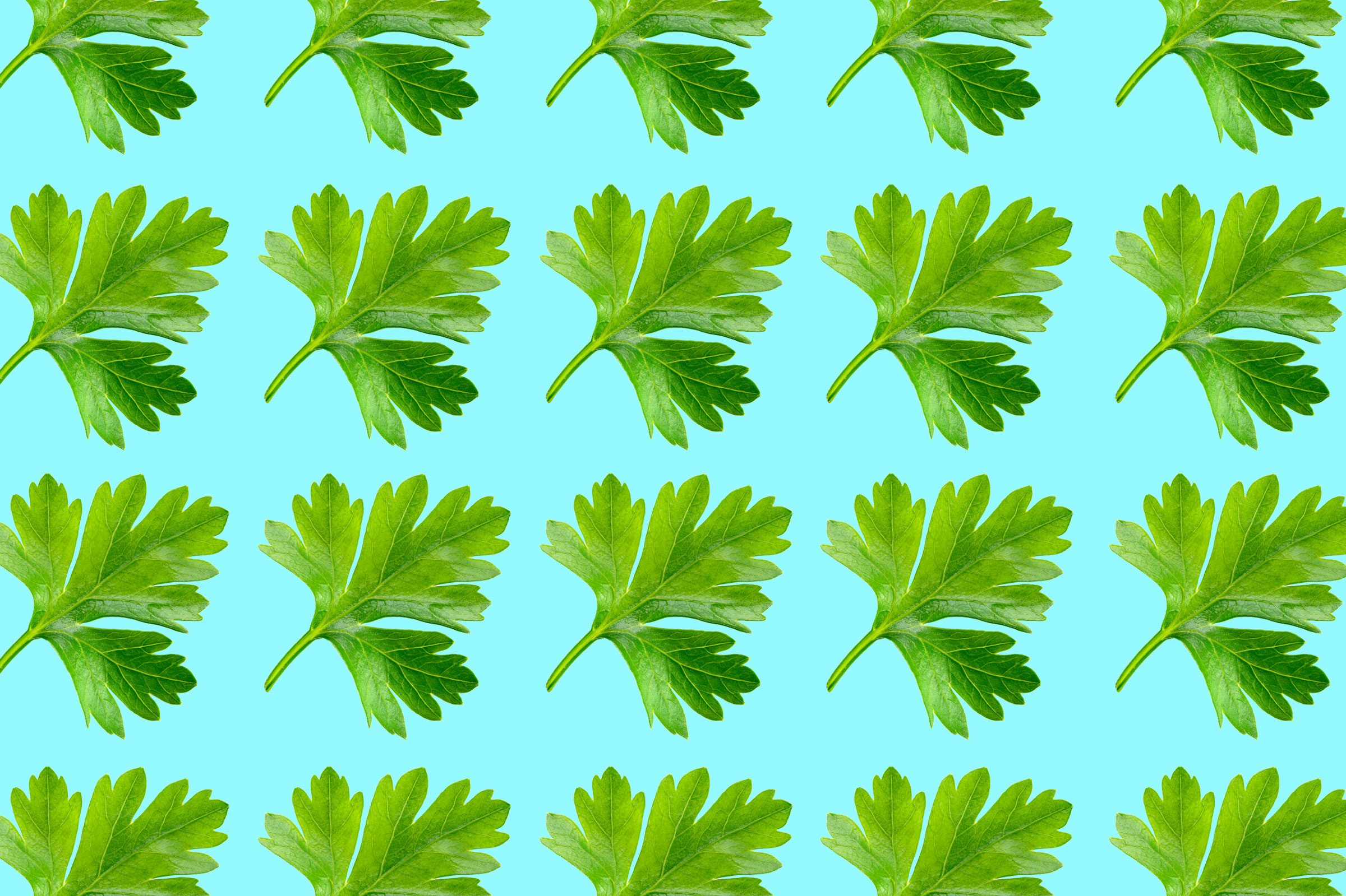 05-6-ways-to-keep-frozen-foods-fresh-parsley