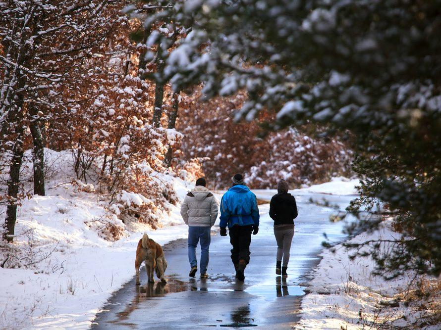 winter_walking