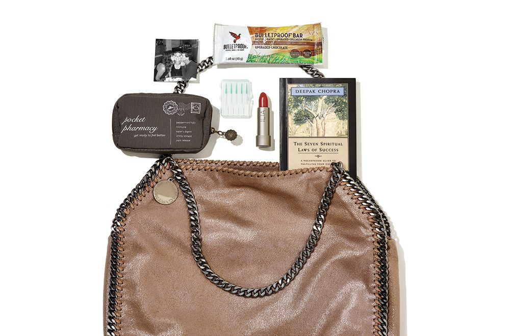 Kate Ross LeBlanc's purse