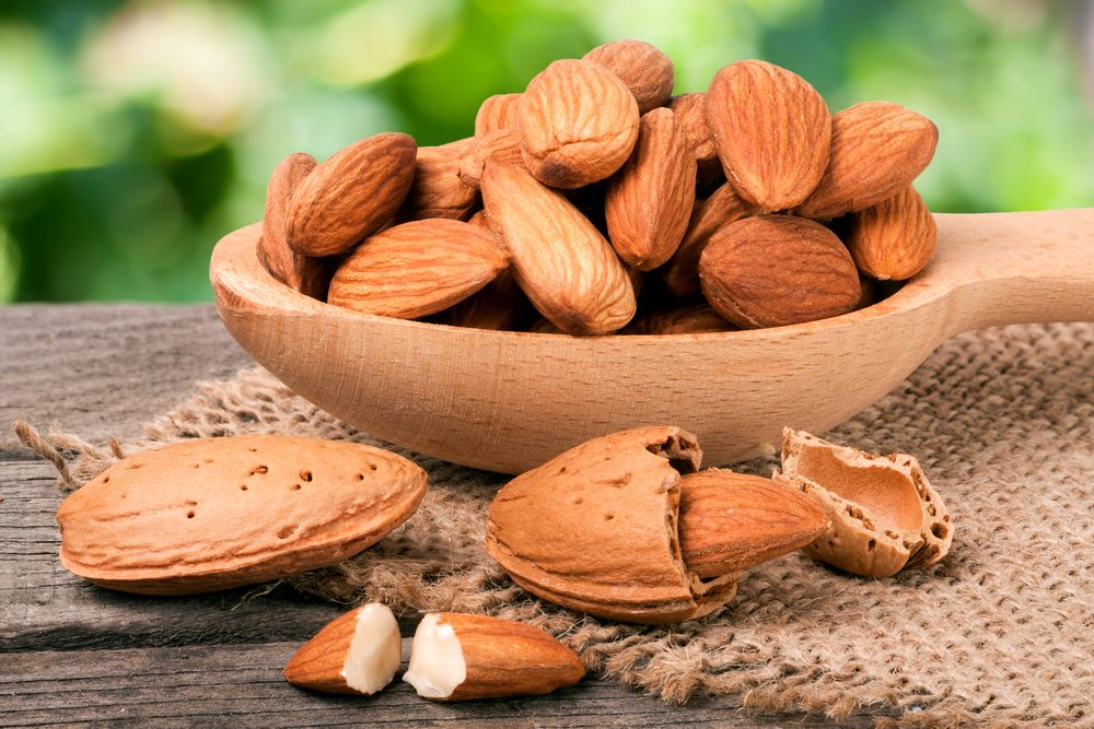 Image result for facts about almond