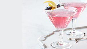 Homemade Blueberry Vodka