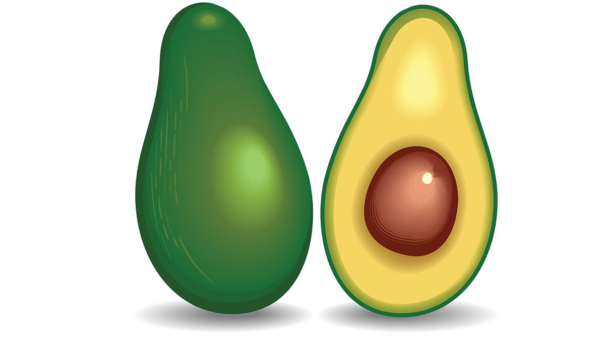 foods high in fibre, an illustration of an avocado